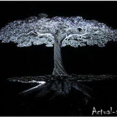 Kevin Iris: из алюминия в дерево