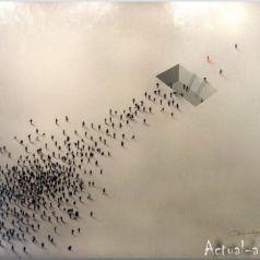 Craig Alan: толпами не собираться, портреты не создавать