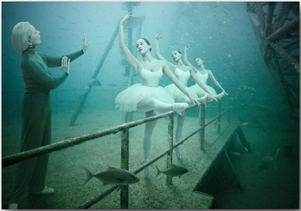 Андреас Франке (Andreas Franke)_Ванденберг (Vandenberg)_Art Gallery_Photo_08
