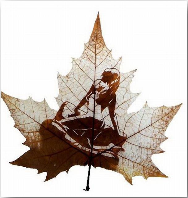 Увидеть прекрасное в листьях