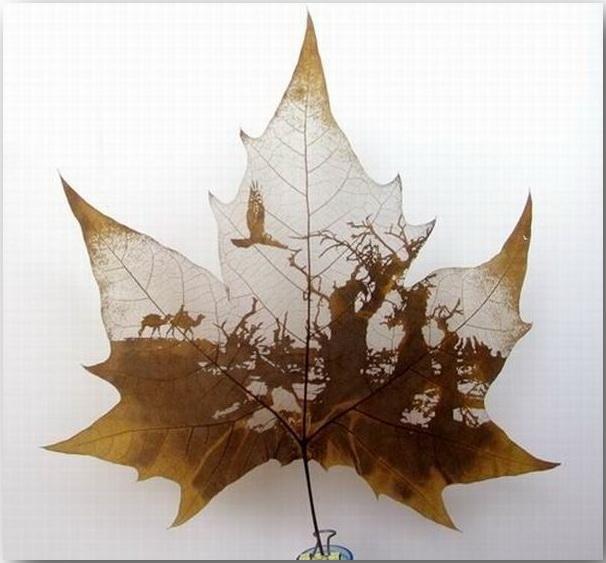 Резьба по листьям (Leaf Carving Art)_08