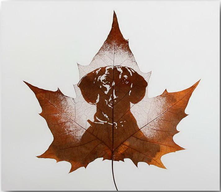 Резьба по листьям (Leaf Carving Art)_18