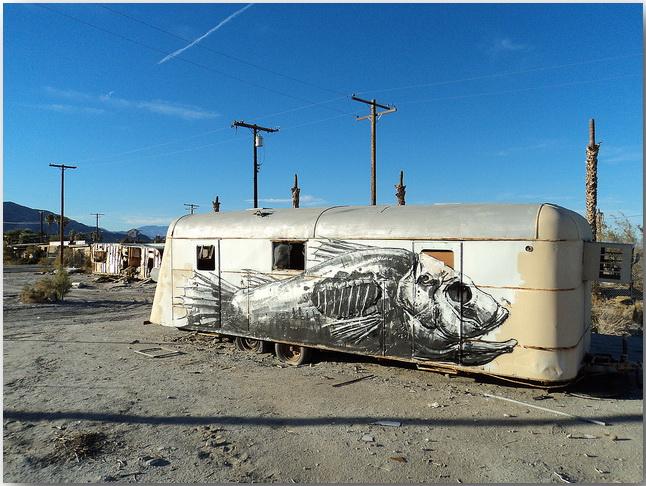 Дикие животные уличного художника Роа (Roa)_street-art_05