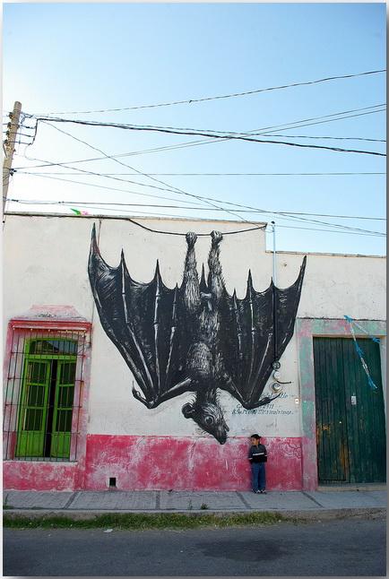 Дикие животные уличного художника Роа (Roa)_street-art_24