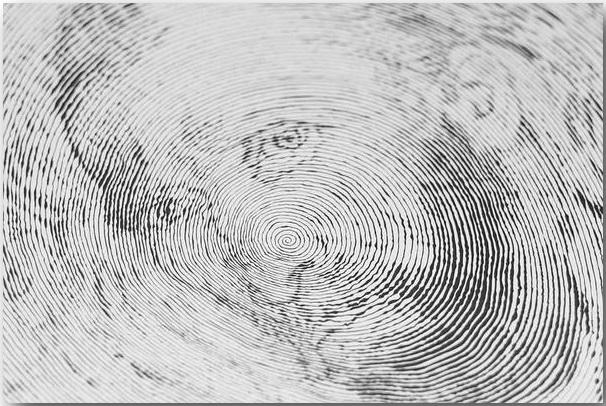 Автопортрет Винсента Ван Гога_Спиральные иллюстрации Чан Чонг Хви (Chan Hwee Chong)_art_05