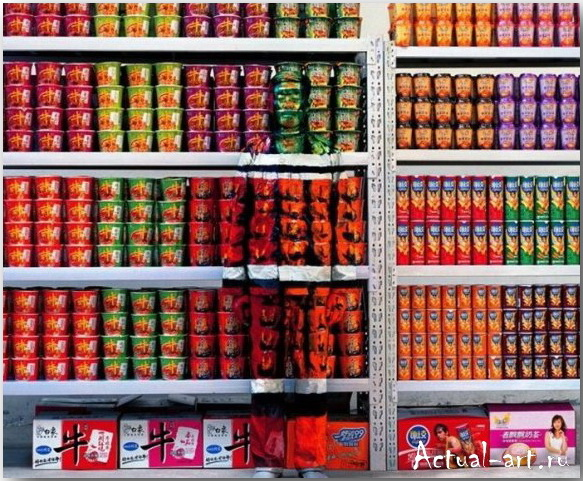 Лю Болин (Liu Bolin)_art_14