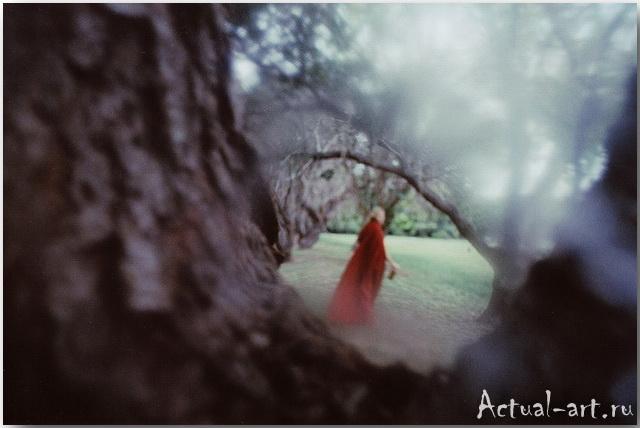Элисон Скарпулла (Alison Scarpulla)_Photography_06