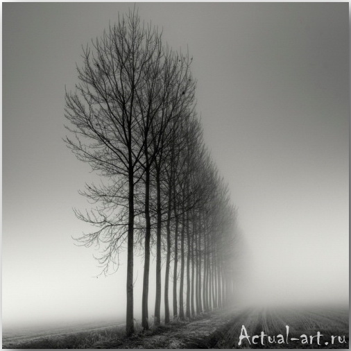 Пьер Пелегрини (Pierre Pellegrini)_Photography_02