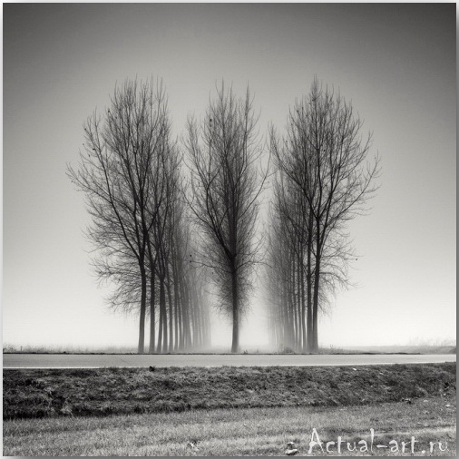 Пьер Пелегрини (Pierre Pellegrini)_Photography_07