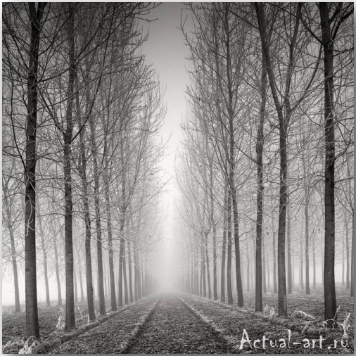 Пьер Пелегрини (Pierre Pellegrini)_Photography_08