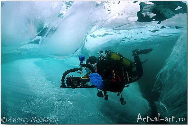 Андрей Некрасов_подводные фотографии_08
