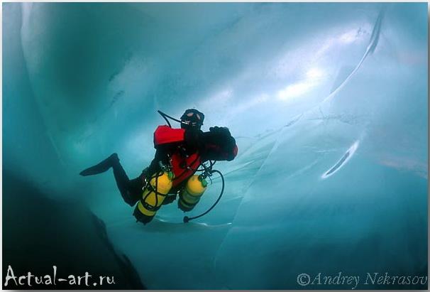 Андрей Некрасов_подводные фотографии_09
