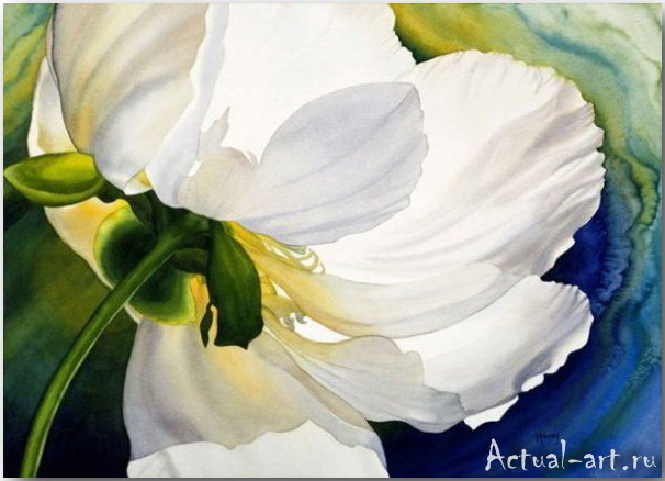 Marney Ward: луч солнца в лепестках цветка