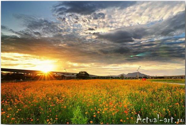 Великолепные закаты фотографа Joyoyo_08