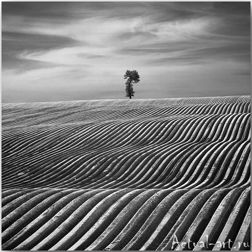 Дариуш Климчак (Dariusz Klimczak)_Photography_17