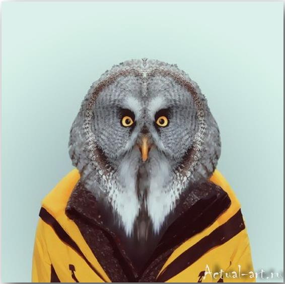 Серия фотографий «Зоологическая книга» Яго Партала (Yago Partal)