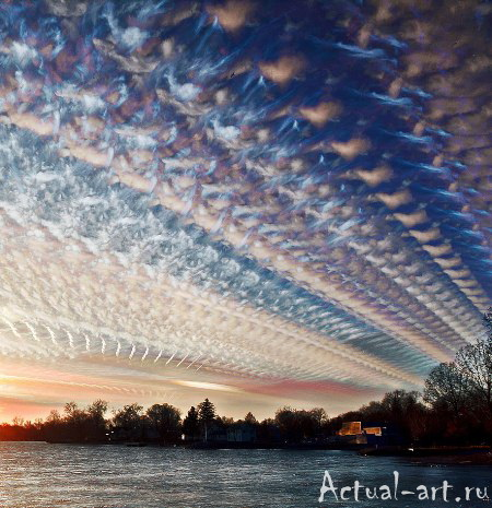 Мэтт Моллой (Matt Molloy)_Photography_14